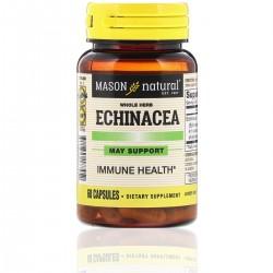 Echinacea (60 cap)