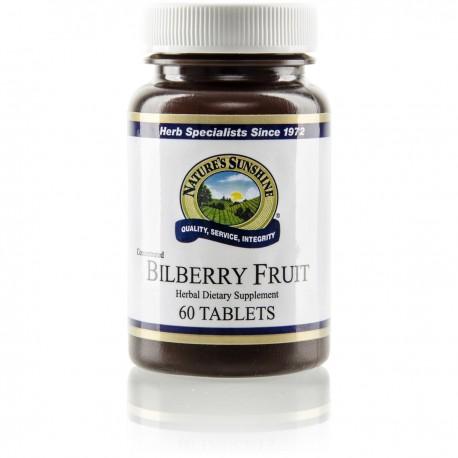 Bilberry Fruit Concentrate (60 Cap) Arandanos